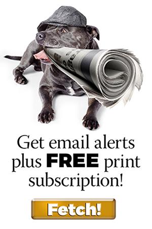BM Subscription