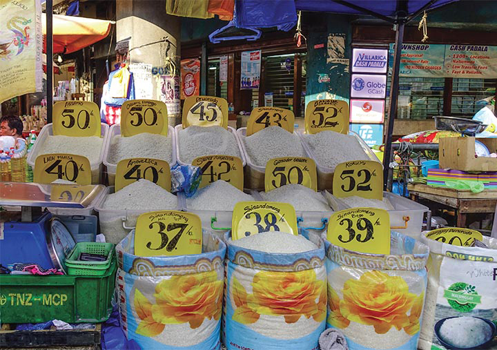 Government allows more traders to import rice | BusinessMirror