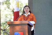 Philippine Economic Zone Authority (peza) Director General Charito B. Plaza