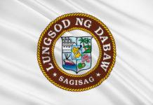 Davao City Flag